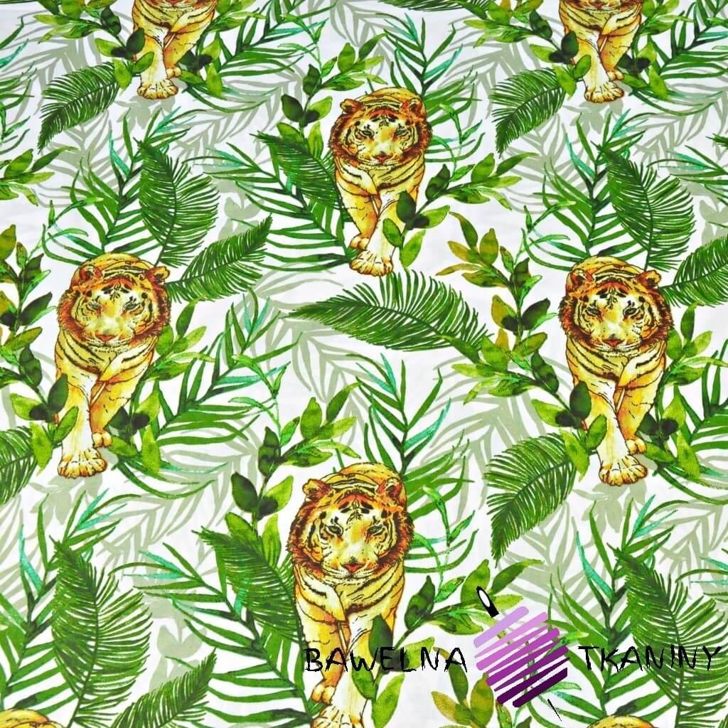 Tygrysy z liśćmi palmowymi na białym tle