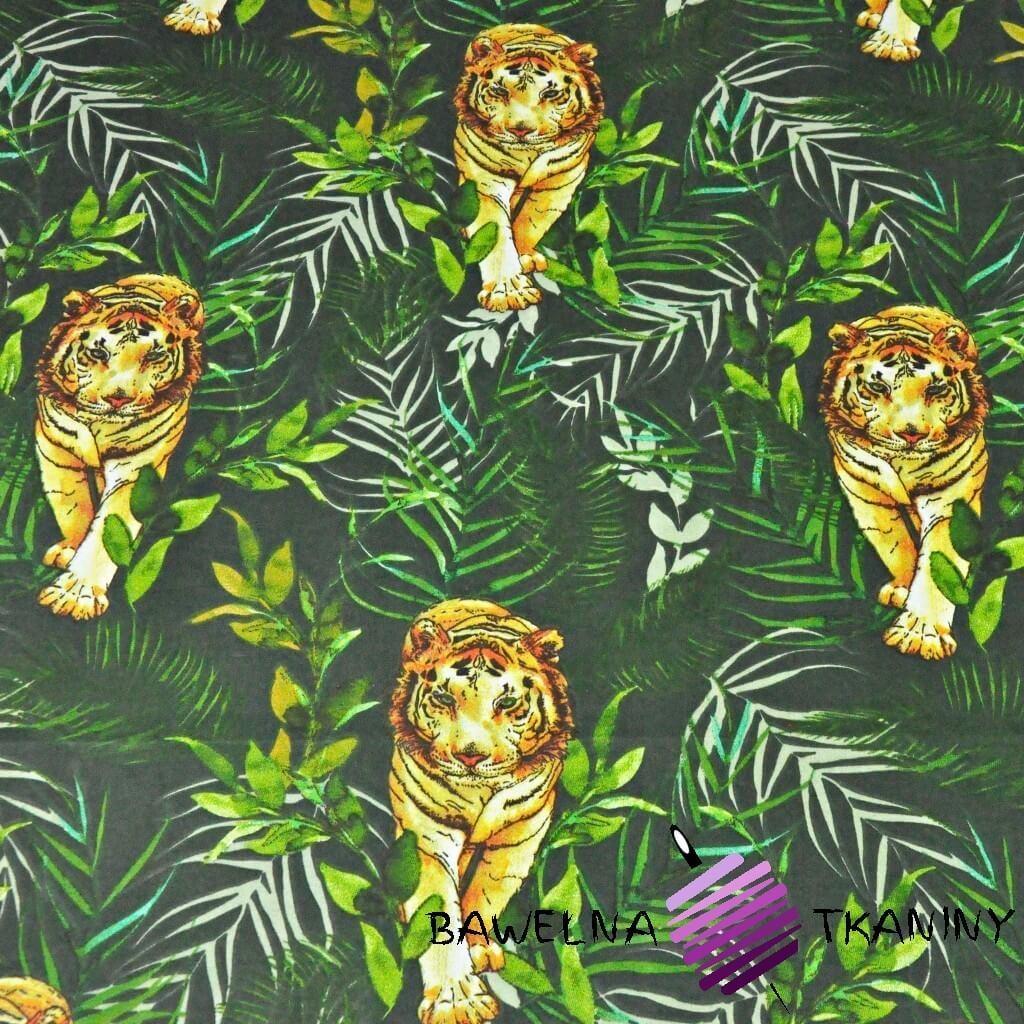 Tygrysy z liśćmi palmowymi na ciemno zielonym tle