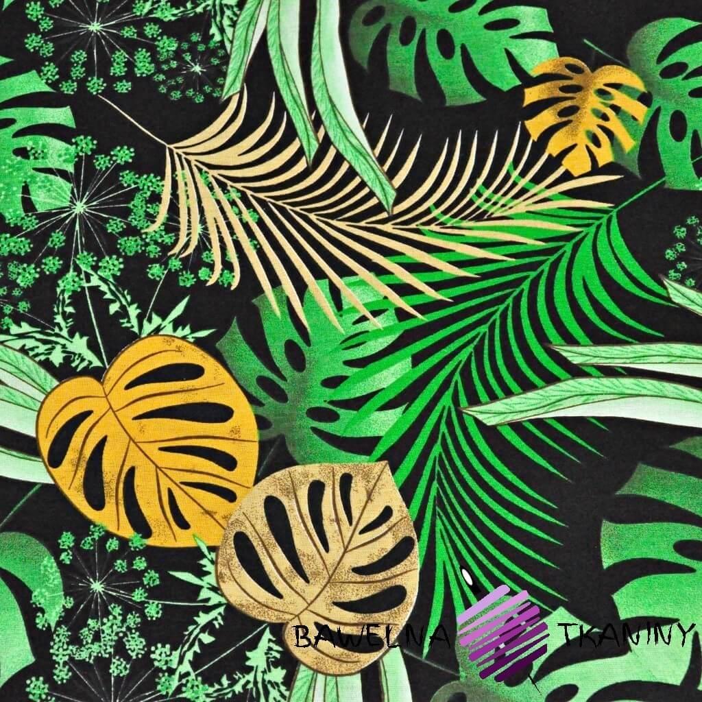 liście monstera żółto zielone na czarnym tle