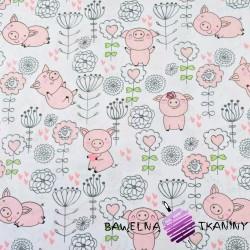 świnki z kwiatuszkami na białym tle
