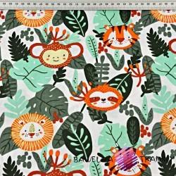 zwierzęta w dżungli na białym tle