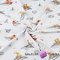 zwierzątka w papierowych samolocikach na białym tle