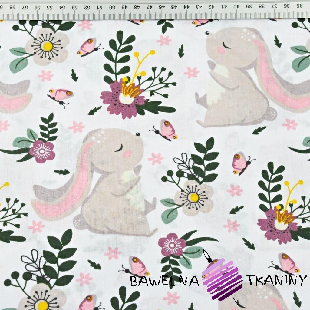 króliki na zielono fioletowej łące na białym tle