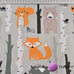 zwierzęta w lesie na szarym tle
