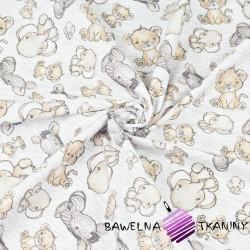Zebry lwiątka i słoniki beżowe na biało szarym tle