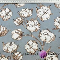 kwiaty pąki bawełny na ciemno szarym tle