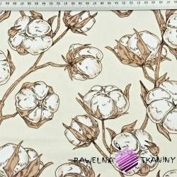 kwiaty pąki bawełny na ecru tle