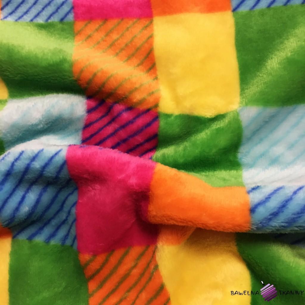 Polar plus kwadraty kolorowe