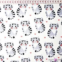 Bawełna kotki na szarym tle