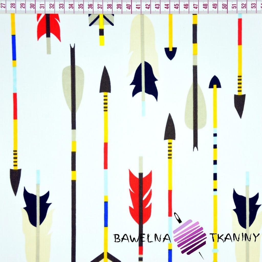 Bawełna strzałki indiańskie na białym tle