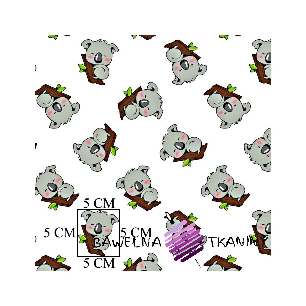 Bawełna Misie koala na białym tle