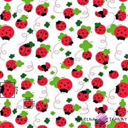 Bawełna czerwone biedronki z listkiem na białym tle