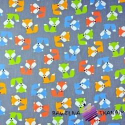 Bawełna kolorowe Liski na szarym tle