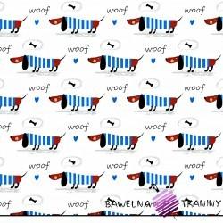 Bawełna jamniki niebieskie na białym tle