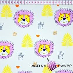 Bawełna lwy fioletowe na białym tle