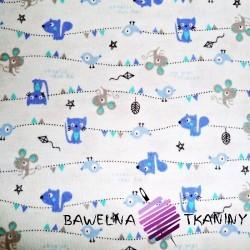 Knitwear cats & dogs on light blue background