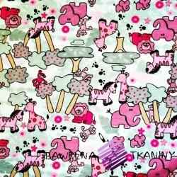 Knitwear pink ZOO