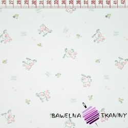 Knitwear pink dogs on white background