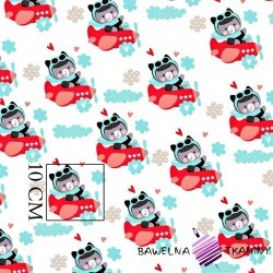 Cotton mint & red bears in plane on white background