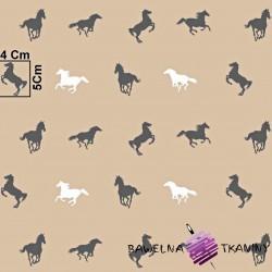 Bawełna konie biało szare na brązowym tle