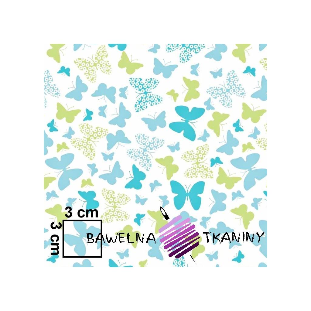 Bawełna motylki niebiesko zielone na białym tle