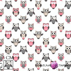 Cotton gray & pink owls on white background