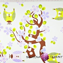 Cotton green & pink owls on tree on white background