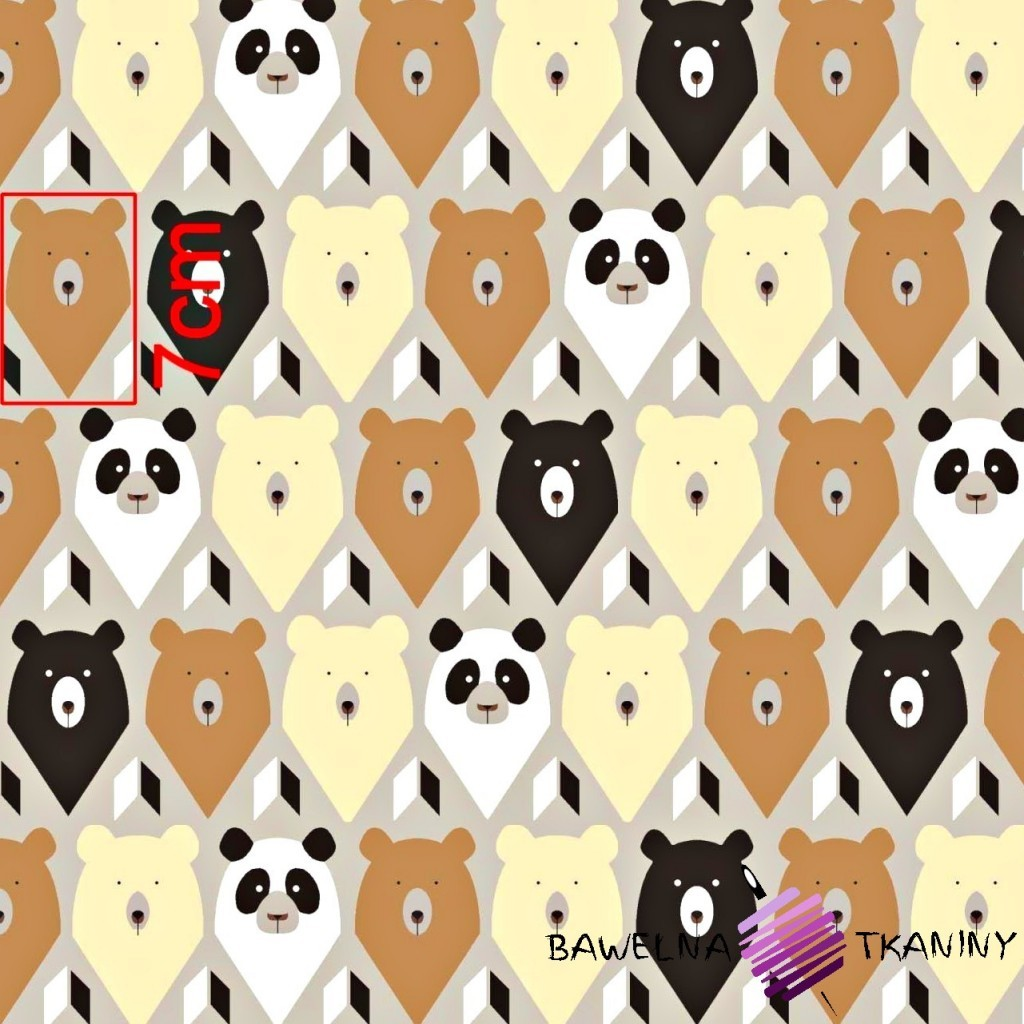 Bawełna niedźwiedzie na szarym tle