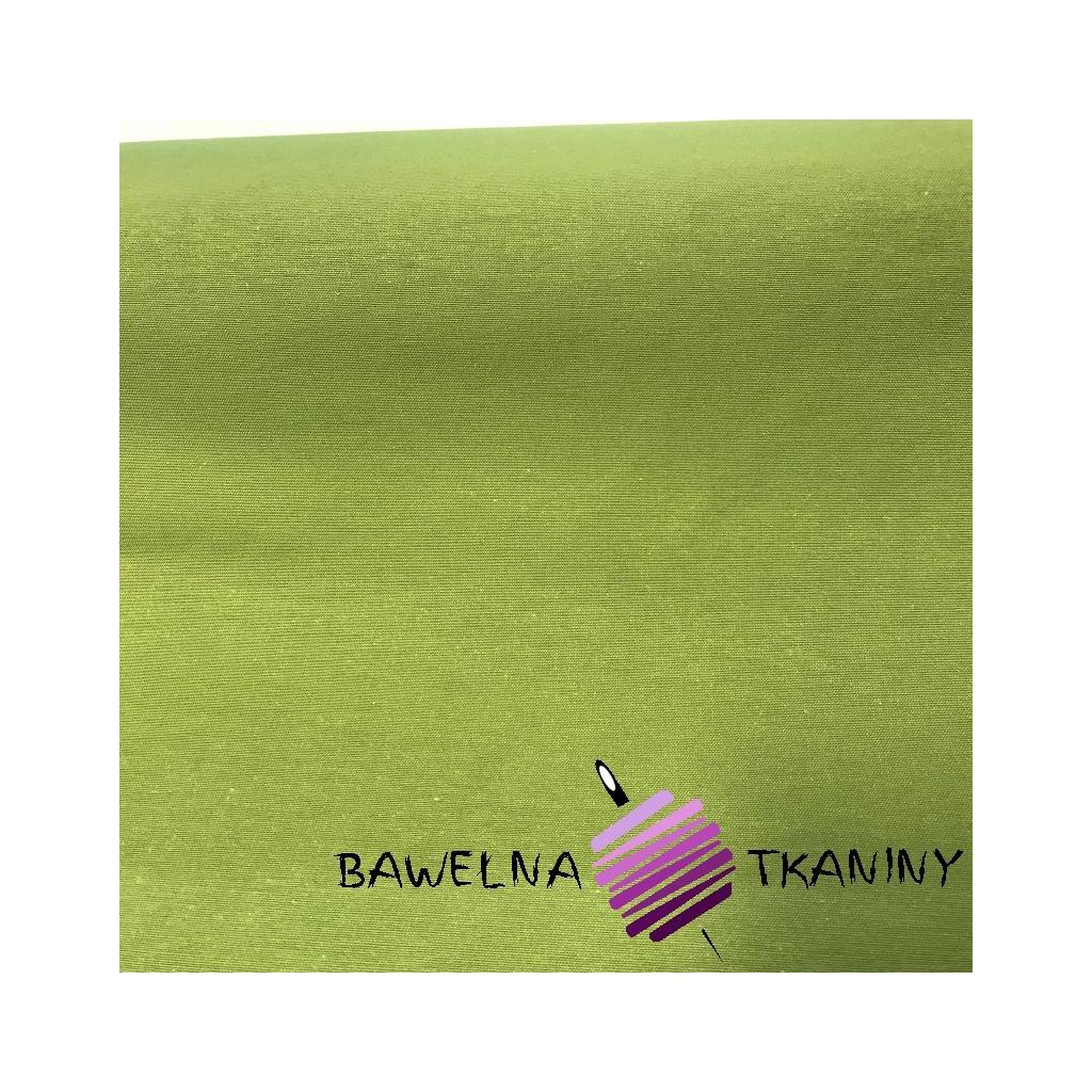 Bawełna zielony CANVAS