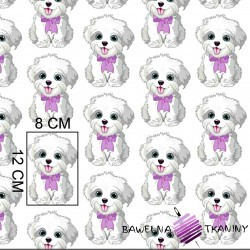 Cotton dogs with purple bows on white background