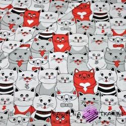 Bawełna koty w kinie szaro biało czerwone