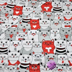 Cotton white, gray & red cats