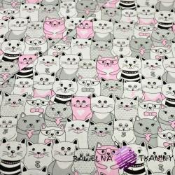 Bawełna koty w kinie szaro biało różowe