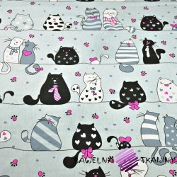 Cotton crazy amaranth cats on gray background