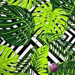 Bawełna liście zielone na czarnych rombach na białym tle