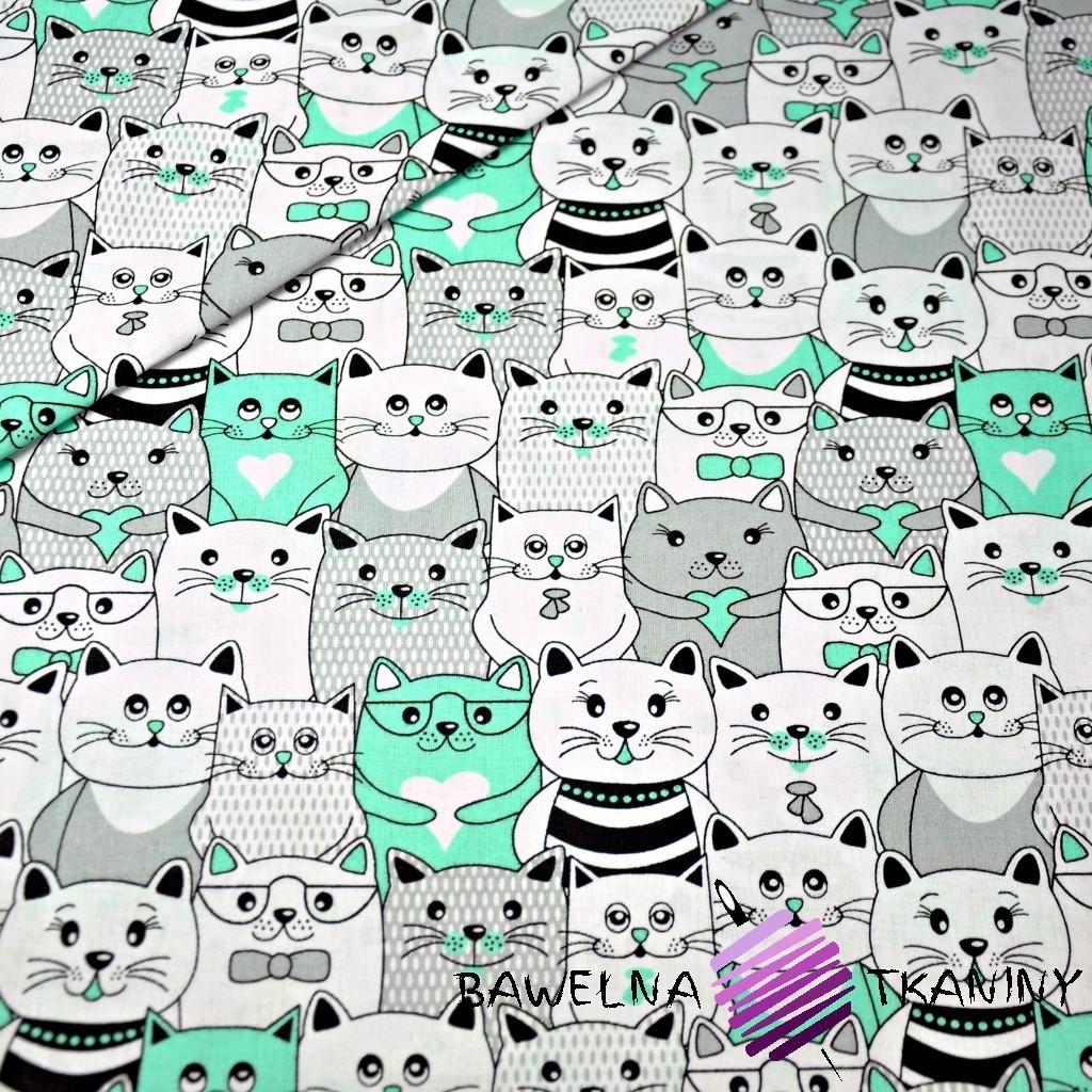 Bawełna koty w kinie szaro miętowe