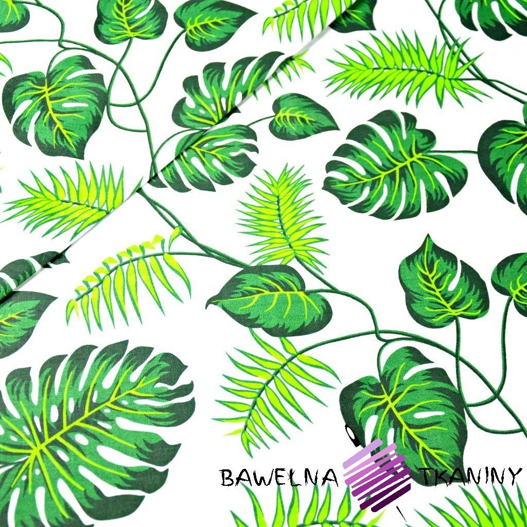 Bawełna kwiaty zielone na białym tle