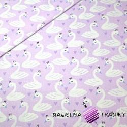 Bawełna łabędzie białe na fioletowym tle