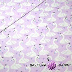 Cotton swans on purple background