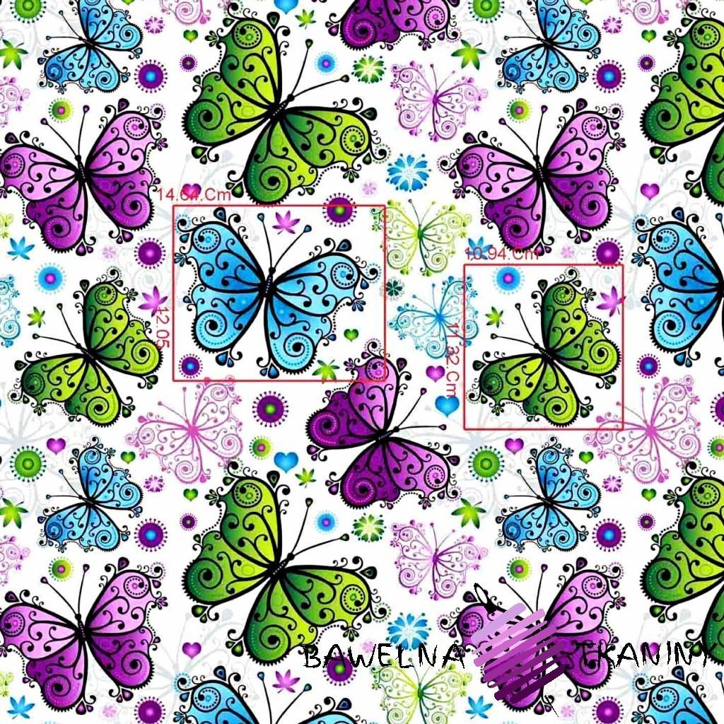 Bawełna motyle zielono niebiesko fioletowe na białym tle.