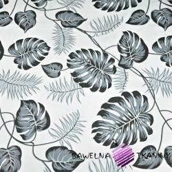 Bawełna liście szare na białym tle