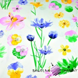 Cotton spring flowers on white background