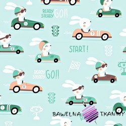 Cotton rabbits in race car on mint background