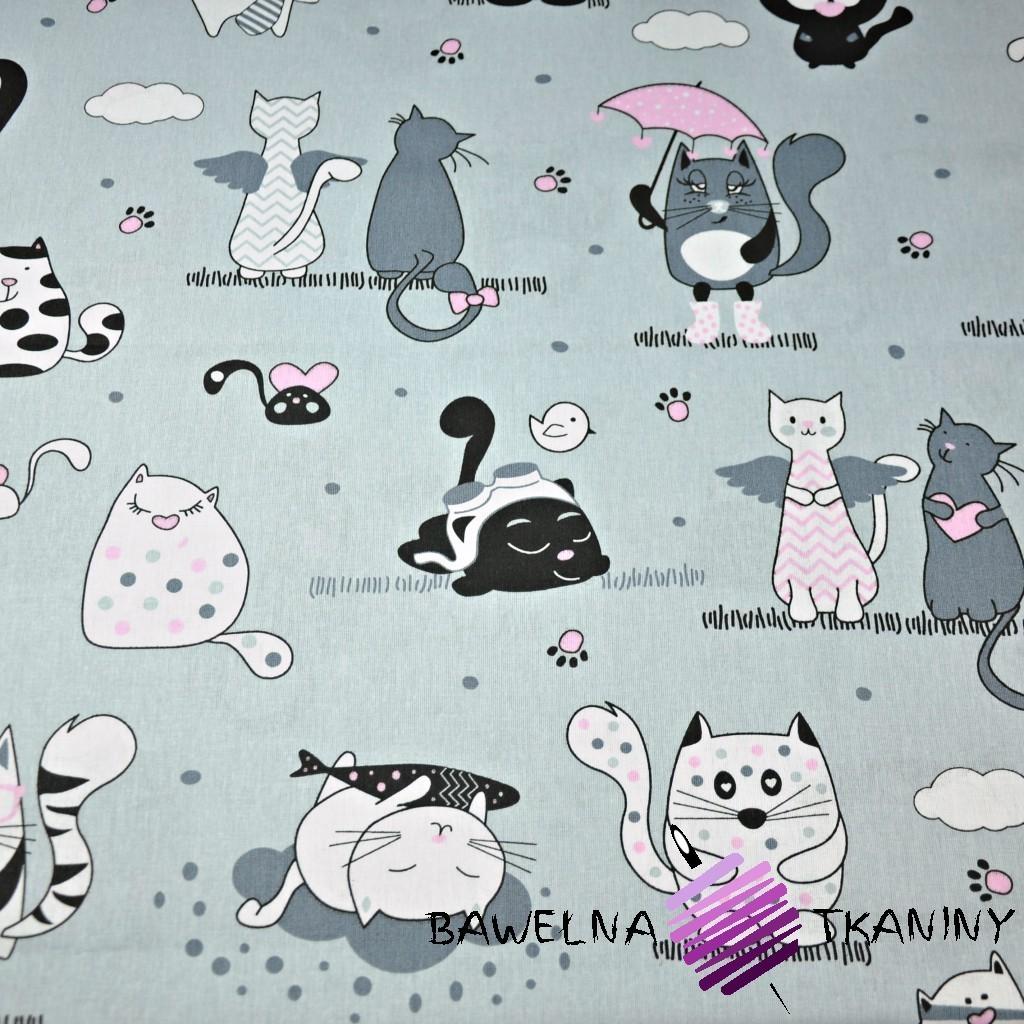 Bawełna kotki szalone z miętowym na szarym tle