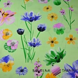 Bawełna kwiaty wiosenne na zielonym tle