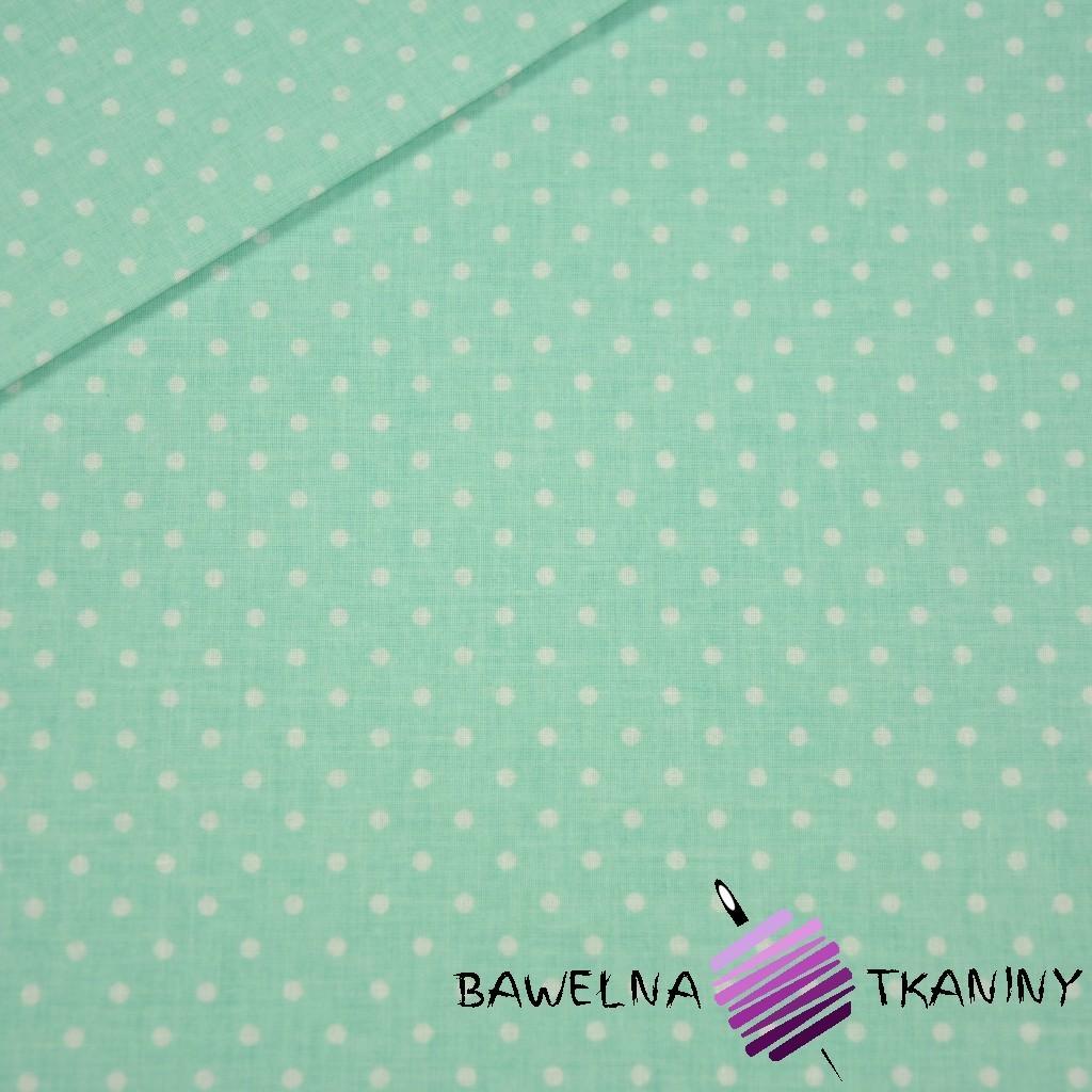Bawełna kropki białe na szaro miętowym tle