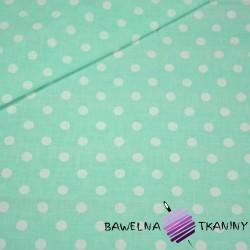 Cotton white spots on gray & mint background