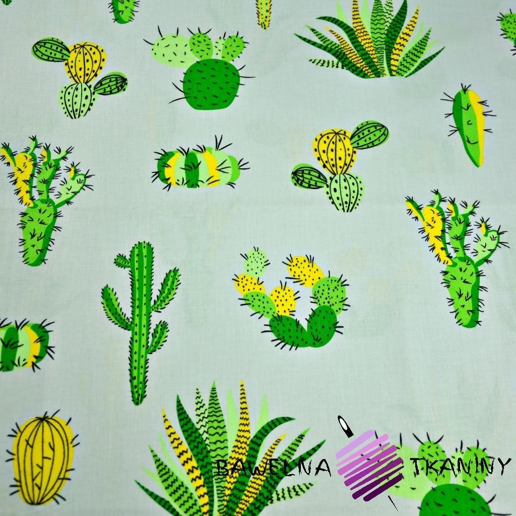 Bawełna kaktusy zielone na szarym tle