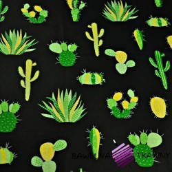Cotton green cactuses on a black background