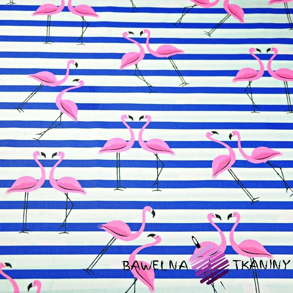 Bawełna flamingi z pasami granatowymi na białym tle